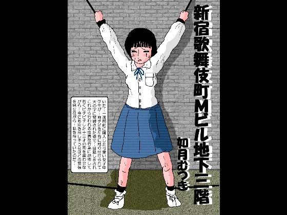 【新着同人】新宿歌舞伎町Mビル地下三階のトップ画像