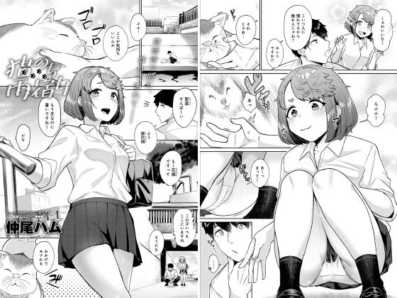 【新着マンガ】猫のち雨宿り【単話】のトップ画像